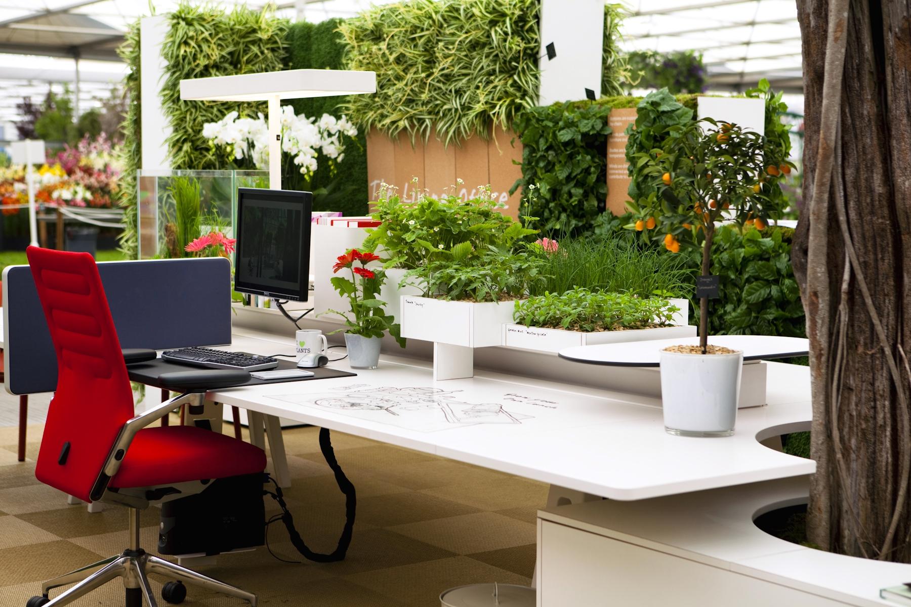 Thiết kế không gian xanh hiện đại